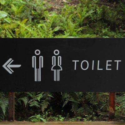día internacional de la incontinencia